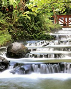 Tabacon Grand Spa  ( Alajuela, Costa Rica )  Thermo-mineral rivers flow through gardens at Tabacon, forming natural waterfalls and pools. #Jetsetter