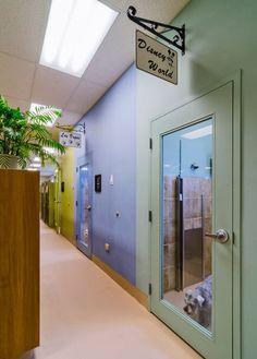 The 2013 Veterinary Economics Hospital Design People's Choice Awards - Hospital Design Bartels Busack Pet Hospital Resort & Spa  Parma Ohio
