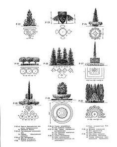 Теория и практика ландшафтного дизайна :: Композиции