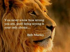 I have said the same thing in my own words...then found out Bob Marley said basically the same thing...great minds think alike!! one of my fave quotes because it is so true