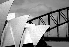 sydney opera house black and white - Google Search