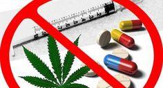 Cuba jamás será tomada como vía de tránsito de drogas y mucho menos para que narcotraficantes se instalen aquí, aseguró el jefe de la Dirección Antidrogas del Ministerio del Interior (Minint), coro…