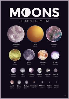 Moons of our Solar System – A gallery-quality graphic design art print by Alexandria Neonakis for sale. Moons of our Solar System – A gallery-quality graphic design art print by Alexandria Neonakis for sale. Cosmos, Space Planets, Space And Astronomy, Earth Science, Science And Nature, Astronomy Facts, Astronomy Quotes, Astronomy Tattoo, Astronomy Stars