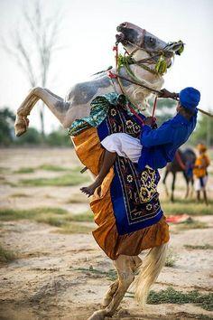 Gatka on horse