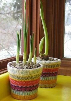 Ha-ha! I think it's the coziest knitting idea ever