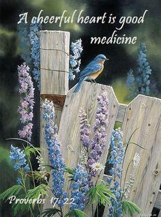 PROVERBS 17:22 :: A cheerful heart is good medicine