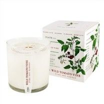 Wild Tomato Vine Soy Candle with Plantable Box Kobo Candles Soy Candles, Scented Candles, Tomato Vine, Candle Packaging, Candle Box, Paper Gift Box, Beautiful Gifts, Candle Making, Things To Buy
