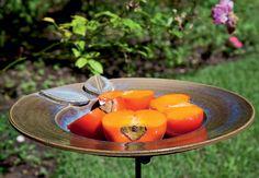 Caquis fresquinhos esperam a visita dos bichinhos. Uma dica: não misture açúcar ou groselha às frutas ou à água. Com o tempo, eles formam cristais que podem ser prejudiciais aos pássaros. Este comedouro é da ceramista Paula Almeida