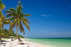Visit the small bungalows on Cayo Levisa, just yards from the turquoise Caribbean sea. Snorkeling, beach volleyball, boat trips and fishing will tempt you from your sun lounger on this tiny island in the Colorados Archipelago in Cuba. #LikeaLocal #Cuba #Travel #Michelin