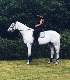 """7,303 Likes, 10 Comments - Aztec Diamond Equestrian (@aztecdiamondequestrian) on Instagram: """"@_beccamoss_ wearing our Black Leggings and tshirt! Can't wait to have leggings back in stock...…"""""""