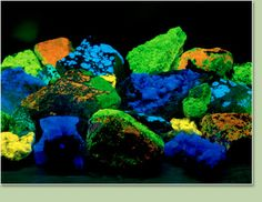 A selection of fluorescent minerals from Glenbow Museum's collection
