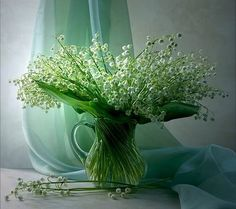 Delicate Beauty - lily-of-the-valley