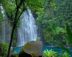 Tinago Falls, Mindanao, Cebu, Philippines    Tinago Falls is a waterfall in Iligan City, Lanao del Norte in the southern Philippine island of Mindanao.