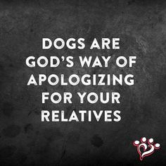 This explains why we have so many dogs! lol