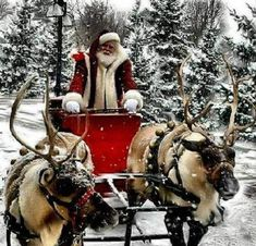 "Santa and the reindeer take a sleigh ride! "" Riding through the snow, in an one horse open sleigh, over the hills we go, dashing all the way""!"