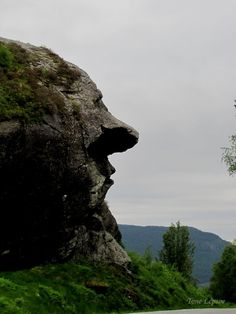 THE OMBO TROLL.  Rogaland, Norway.