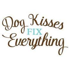 Dog kisses fix everything.