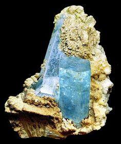 Aquamarine crystals on tan Albite