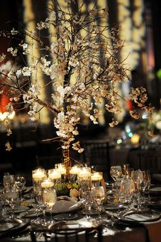 Delicate tree centerpieces with cherry blossoms created the sweetest tablescape scene at Bryant Bryant Dewey Seasons Hotel Baltimore. Tree Centerpieces, Wedding Centerpieces, Wedding Decorations, Summer Wedding, Our Wedding, Dream Wedding, Wedding Ideas, Cherry Blossom Centerpiece, Four Seasons Baltimore