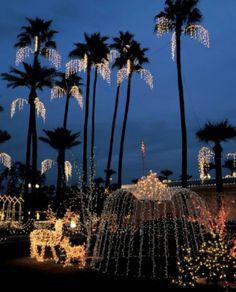 Christmas in Phoenix
