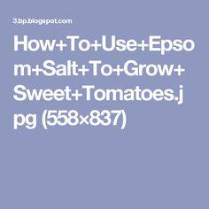 How+To+Use+Epsom+Salt+To+Grow+Sweet+Tomatoes.jpg (558×837)