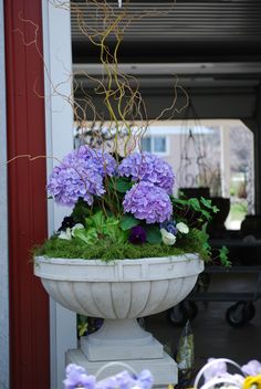 spring hydrangea planter with pansies and curly willow
