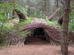 """""""Dutch artist Will Beckers creates magical installations that explore our relationship with the natural world. She uses living natural materials and does not think of herself as a """"part-time artist"""", since her art is always finished by Nature itself. Their capricious sculptures are made for people to enjoy, but they also serve as shelters for forest animals and insects. """""""