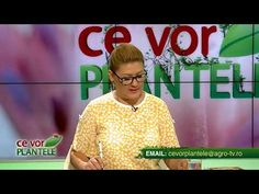ce vor plantele cristina ghibu 2019 08 12 partea2 0330 - YouTube Tv, Youtube, Tvs, Youtube Movies, Television Set