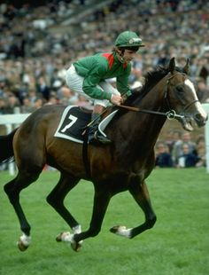 30 years ago, kidnappers broke into the Ballymany Stud in the Republic of Ireland and stole the champion racehorse, Shergar. What happened to the animal remains a mystery.