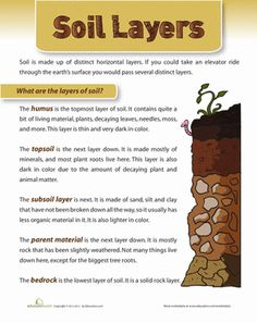 Layers of Soil Worksheet