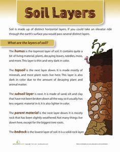 Layers of Soil Worksheet