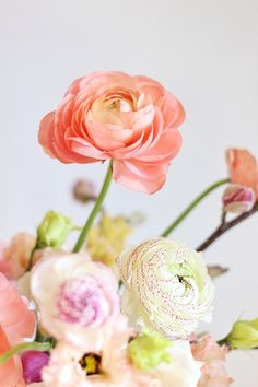 This Blushing Spring Arrangement includes our favourite spring blooms and flowering branches, care and foraging tips and on trend colour inspiration! Spring Wedding Flowers, Spring Blooms, Flower Bouquet Wedding, White Ranunculus, Green Eyes Pop, Color Of The Year, Pantone Color, Amazing Flowers