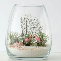 Succulents ideas: Two flamingos with air plants or succulents in a belly vase terrarium Mini Terrarium, Air Plant Terrarium, Terrarium Ideas, Terrarium Decorations, Terrarium Scene, Air Plants, Indoor Plants, Succulents Garden, Planting Flowers
