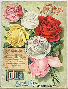 Catalog Information    Company Name:  Iowa Seed Co.    Catalog Title:  1894 Collection (1894)  Publication Information:  Des Moines, IO  United States  Category(ies) of Cover Art:  Roses