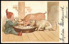 Die Abenteuer von Katze und Schwein