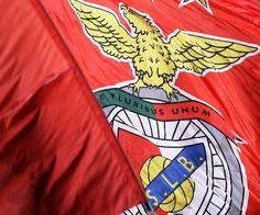 77ª edição da Taça de Portugal: Benfica conquista a 26ª - Desporto - SAPO 24