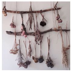 Dried Flowers for Wall Art