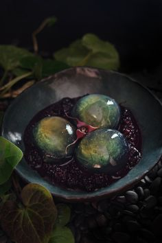 This delightful spring dessert not only looks just like a labradorite cabochon, it tastes delicious too! Wild ginger mingles with green tea for a light jelly, paired with a fruity stewed blackberry sauce. Surprise your guests today! Halloween Dinner, Halloween Desserts, Halloween Treats, Halloween Foods, Halloween Quotes, Funny Halloween, Wild Ginger Plant, Blackberry Sauce, Jelly Desserts