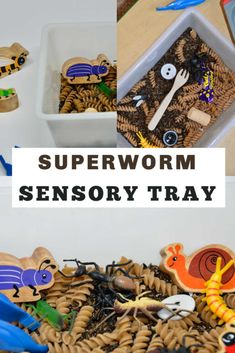 Great for toddler learning and play at home or nursery. Simply use rice, pasta and Superworm objects. Eyfs Activities, Spring Activities, Infant Activities, Classroom Activities, Animal Activities For Kids, Minibeasts Eyfs, Worms, Tuff Tray, Toddler School