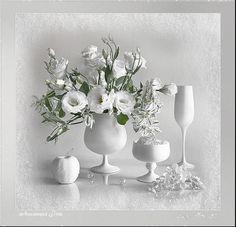Gif_Paradise: WHITE IMAGES