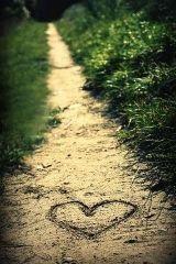 Der Weg zum Herzen