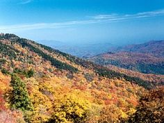Waynesville, NC.  Our second home.  Can't wait to start decorating!