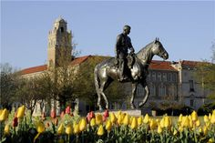 We miss @TexasTech's beautiful campus! What do you miss most about Raiderland? (Photo cred: Texas Tech)