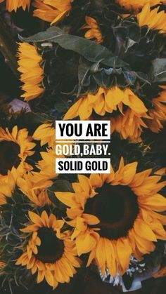 For us Scorpios and sunflower seeds Cute Backgrounds, Phone Backgrounds, Cute Wallpapers, Wallpaper Backgrounds, Cool Wallpaper, Wallpaper Quotes, Cute Tumblr Wallpaper, Sunflowers Tumblr, Sunflower Iphone Wallpaper