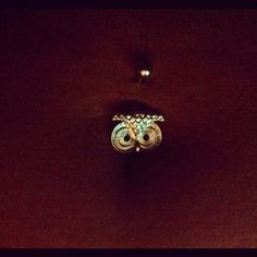Owl belly button ring...omg love it!