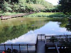 부산공원에서 문화생활 플레이스도 즐기고! 저수지구경까지 원스톱으로 할 수 있는 구덕문화공원