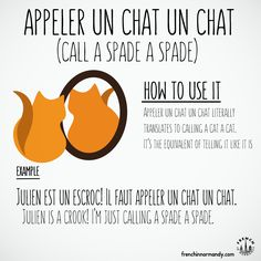 Do you know this French expression? Appeler un chat un chat ... #learnfrench