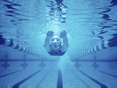 I love swimming many people think it is an independent sport put its not you work with you team to get to the finials in the championship and one person wins in the end but you don't get there without your team. You should try swimming