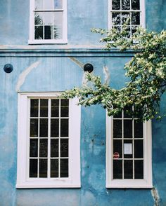 girlinthepark: Lucy Rose Laucht | Charleston, S.C.