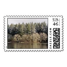 Reflections in a Golden Eye Postage Stamps
